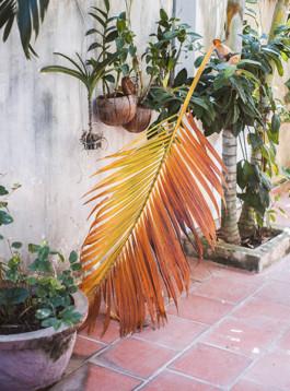 Laura Morales Phnom Penh
